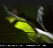 A Softest Green by Geovoxic by geovoxic