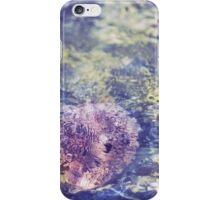 Shades of Underwater Treasure  iPhone Case/Skin