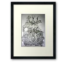 Systemae Naturae 2 Framed Print