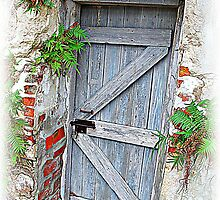 The Mystery Door by Susan Werby