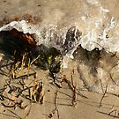 Seaweed Splash by adellecousins