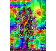 CRAZY TREE Photographic Print