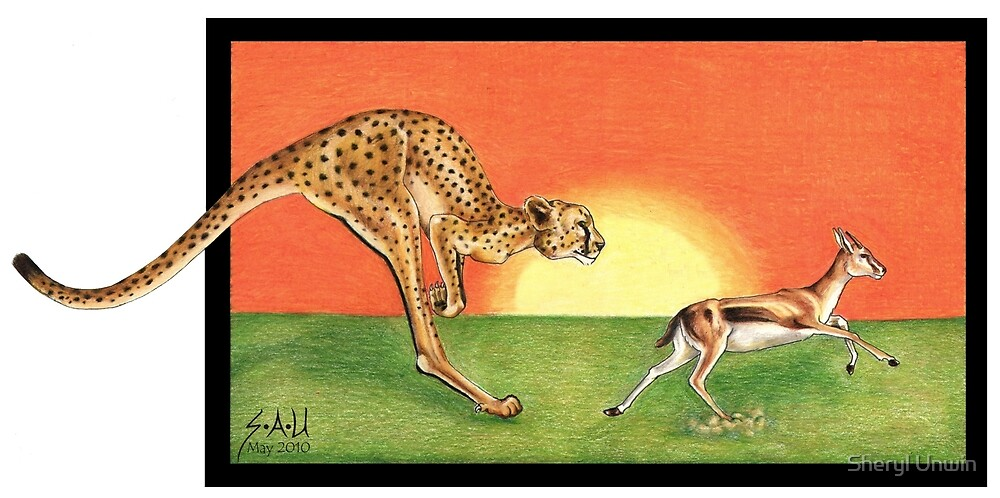 Cheetahroo on the Hunt by Sheryl Unwin