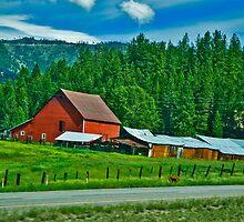 Mineral County Farm by Bryan D. Spellman