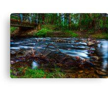 Little River #1 Canvas Print