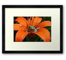 """lily"" pad Framed Print"