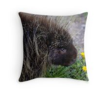 """My"" Porcupine #2 Throw Pillow"
