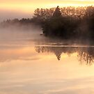 Misty Morning Sunrise by Debbie  Roberts