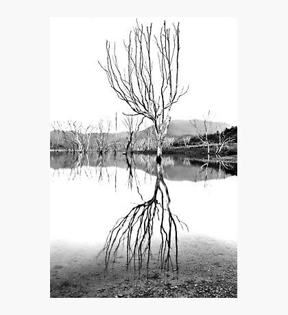 Dusk at Lake Eildon #2 Photographic Print
