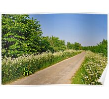 A green-white polder dike Poster