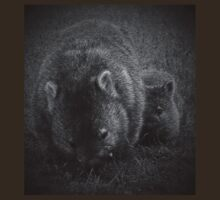 Wombats by col hellmuth