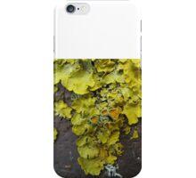 Lichen 5 iPhone Case/Skin