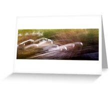 Egrets 2 Greeting Card