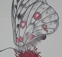 Glasswing Butterfly by cheetaah