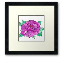 Wild Peony Watercolor Framed Print