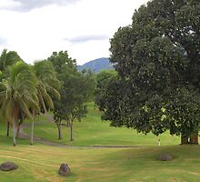 Mount Malarayat Golf Course by walterericsy