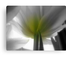 A touch of yellow and green Canvas Print