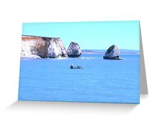 Waters of the Wight Greeting Card