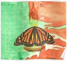 Si mariposa Poster