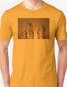 Reeds In Golden Water T-Shirt