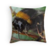 Close Up And Personal! Throw Pillow
