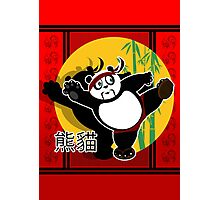 Martial Arts Panda Photographic Print