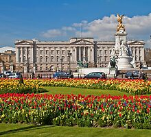 Buckingham Palace, London, England by vadim19