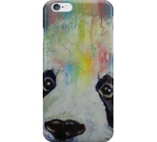 Panda Rainbow iPhone Case/Skin