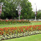 Buckingham Gardens by jtalia