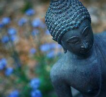 Siddhartha by Aimee Stewart