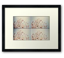 Tree Times Four Framed Print