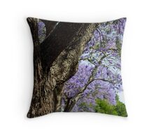 Jacaranda lined street,Gympie,Qld Throw Pillow