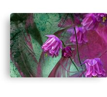 Pink Mystery Canvas Print
