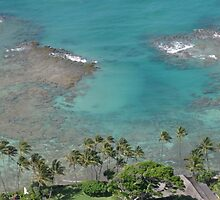 Shoreline from Diamondhead by jtalia
