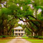 Path to Plantation  by L.D. Bonner
