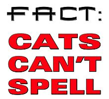 cats cant spell Photographic Print