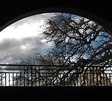 Harbour Bridge Window1 by Virginia Daniels