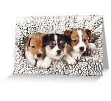Group Hug Greeting Card