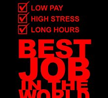 Tax Consultant Low Pay High Stress Long Hours BEST JOB IN THE WORLD by birthdaytees