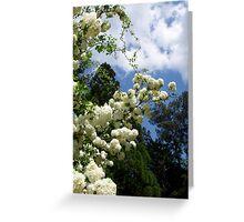 Zen sky Greeting Card