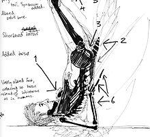 Concept Sketch: Bird/Human Anatomy Graft by boceto