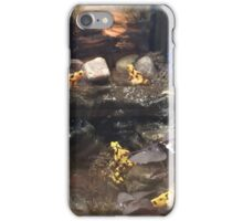 Poisonous Yellow Frog iPhone Case/Skin
