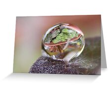 Plant in a Bubble Greeting Card