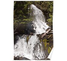 Falls Creek, Mt. Rainier National Park Poster