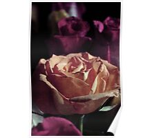 Grungy Rose Poster