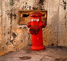Salvador, Brasil 7319 by Mart Delvalle
