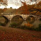 Clumber bridge by saxonfenken