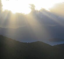 Marlborough Sounds Early Morning by trevallyphotos