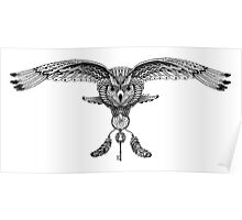 Owl and dream Poster