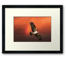Crossing the Rainbow Framed Print